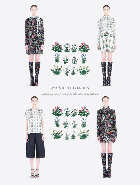 Modern Colorist Valentino Midnight Garden | Flower