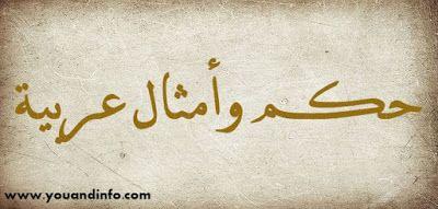 حكم عربية أجمل الحكم والأمثال العربية Arabic Calligraphy Arabic Calligraphy