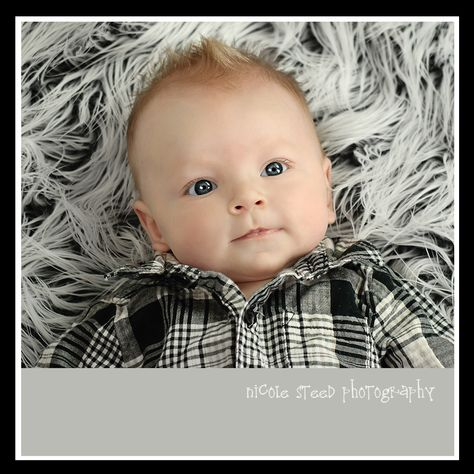 3 month old - grey background
