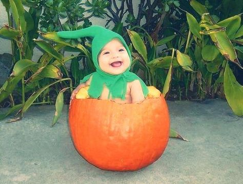 If you have a baby, you should definitely put them in a pumpkin