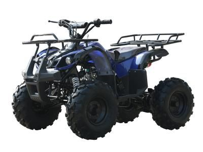 Coolster 3125XR-8 125cc Kids ATV | Mega Motor Madness | Kids
