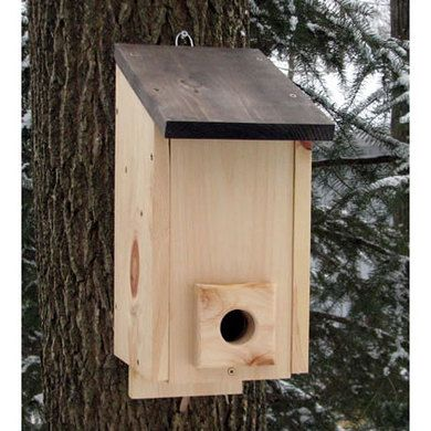Winter Roost Birdhouse Bird Houses Backyard Birds Bird House