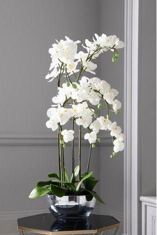 Artificial Luxe Orchid In Glass Bowl In 2020 Orchids Artificial Flower Arrangements Modern Flower Arrangements