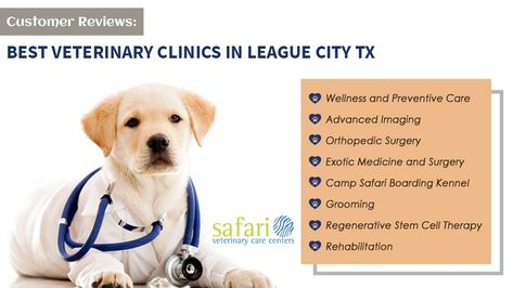 Customer Reviews One Of The Best Veterinary Clinics In League City Tx Veterinary Care Pet Insurance Reviews Cheap Pet Insurance