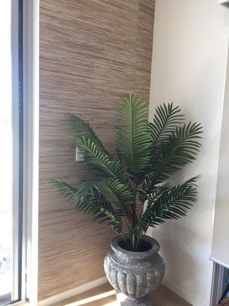 Wallpaper Installation Manly Brisbane Using 91cm Wide Natural Grasscloth How To Install Wallpaper Grasscloth Wallpaper How To Hang Wallpaper