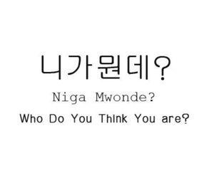 Korean Language Cheat Sheet - Who do you think you are?