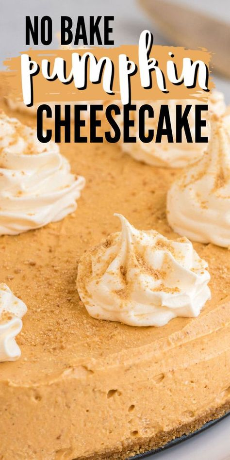 This easy no bake pumpkin cheesecake with graham cracker crust and pumpkin spice is the perfect dessert to ease into the Fall spirit! #pumpkin #pumpkincheesecake #nobake #nobakedesserts #fallfood #fallrecipes #pumpkindessert #amandascookin