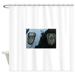 Two Florida Alligators Shower Curtain By Patty Weeks Old Florida