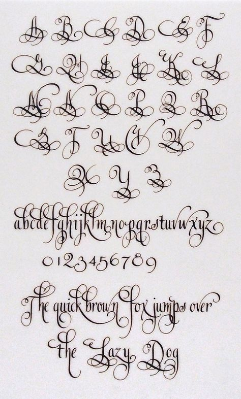 Diy Discover Quite fancy lettering alphabet Alphabet A Hand Lettering Alphabet Calligraphy Letters Alphabet Pretty Fonts Alphabet Tattoo Alphabet Typography Letters Tattoo Lettering Fonts Lettering Styles Script Fonts Calligraphy Fonts Alphabet, Tattoo Lettering Fonts, Hand Lettering Alphabet, Graffiti Lettering, Penmanship, Copperplate Calligraphy, Handwriting Fonts, Number Caligraphy, Font Styles Alphabet