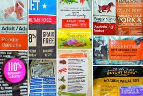 Approved Dry Dog Food List Dry Dog Food Dog Food Recipes Best
