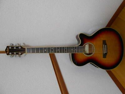 Vintage Pro Martin Ea 500w Vs Custom Flame Burst Electric Bass Guitar Guitar Vintage