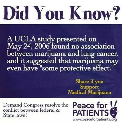 Image result for A study done at UCLA in 2006 showed that not only does smoking marijuana not cause lung cancer