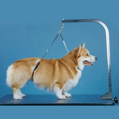 Proguard No Sit Haunch Holder Dog Care Mobile Pet Grooming