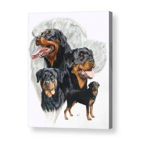 Rottweiler Puppies Rottweilerpuppy Aso Dog Doge Doggo