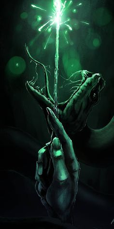 Lord Voldemort And Harry Potter Wallpaper And Photo Collection