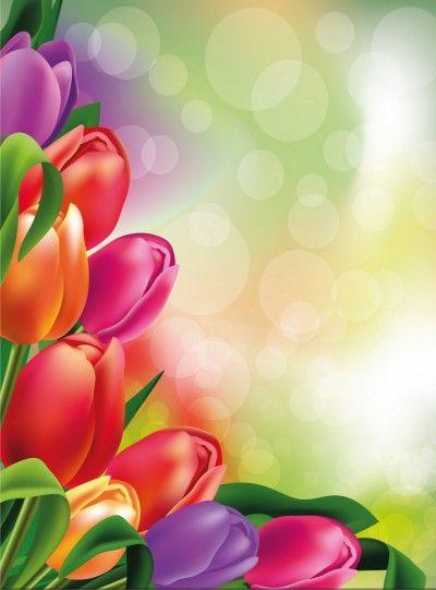 Kartinki Fony S Cvetami Dlya Prezentacij Flower Boarders Flower