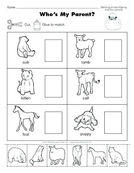 Animals Worksheets For Kids Wild And Domestic Kindergarten Related Time Pdf Animal Lessons Mother And Baby Animals Science Worksheets