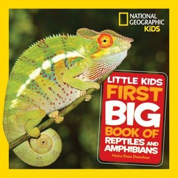 Little Kids First Big Book Of Reptiles And Amphibians Little Kids First Big Books Ebook By National Geographic Ki In 2020 Amphibians Reptiles And Amphibians Reptiles