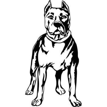 Sketch Style Angel With Bird Tattoo Design Pitbull Tattoo Dog