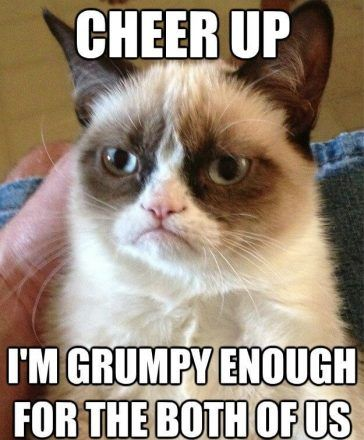 These Cheer Up Memes Are Sure To Raise A Smile Funny Grumpy Cat Memes Grumpy Cat Humor Grumpy Cat Quotes