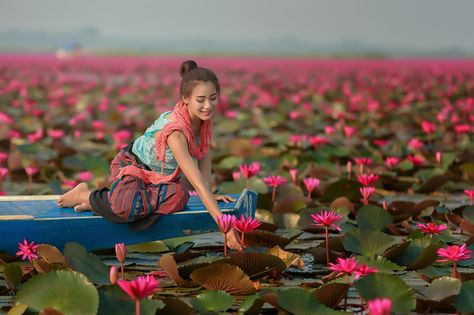 https://flic.kr/p/LwUyRY | Beautiful girl sitting in boat in the lotus field | Beautiful girl sitting in boat in the lotus field
