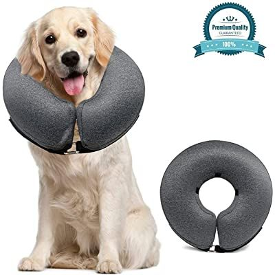 dog cone pet recovery collars