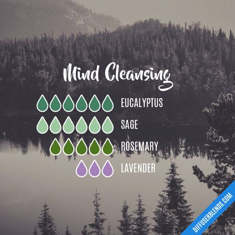 Mind Cleansing - Essential Oil Diffuser Blend It probably won't take this much. I'd probably half it. My diffuser only needs 10 drops total, max Essential Oils Guide, Essential Oil Uses, Doterra Essential Oils, Doterra Blends, Essential Oil Combinations, Beauty Box, Essential Oil Diffuser Blends, Diffuser Recipes, Aromatherapy Oils