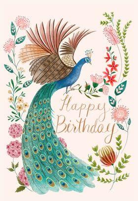 Cute Peacock Feathers Card Funny Peacock Birthday Card Happy Birthday Card