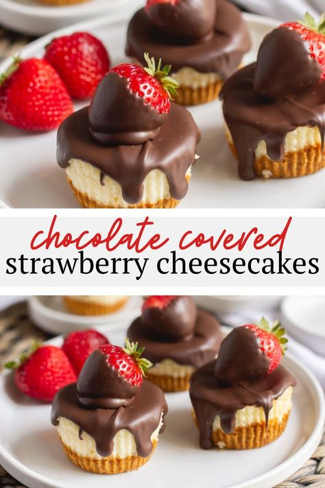 The best way to serve these classic mini cheesecakes is with chocolate covered strawberries on top! Check out this recipe for light and airy mini cheesecakes with a graham cracker crust - they're a delightful twist on the typical dense and creamy Mini Desserts, Mini Cheesecake Recipes, Chocolate Cheesecake, Cheesecake Toppings, Mini Strawberry Cheesecake, Cheesecake Desserts, Chocolate Caramels, Chocolate Art, Sweet Desserts