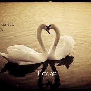 . #love #eternity #forever # #mood #insta #igers #art #aesthete #instapic #beautiful #heart...   . #love #eternity #forever # #mood #insta #igers #art #aesthete #instapic #beautiful #heart #edit #animals #awe #cute #blessed #photo #look #water #inspiration #wildlife #instaheart #casual #style #amor #real #lovetakesforever #lovetakestime #eardrummanna