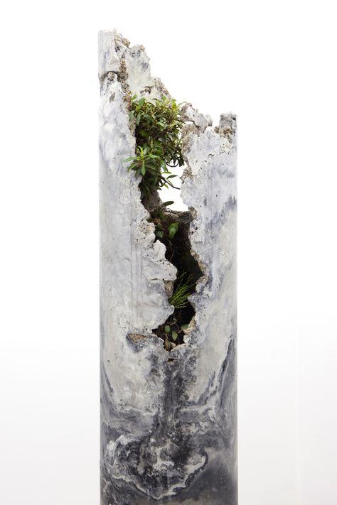 Jamie North Innerouter, Flume 2013 fibre reinforced concrete (portland cement, coal ash, steel slag, iron oxide), plant species include; Ficus rubiginosa (Port Jackson Fig) and Pyrrosia rupestris (Rock Felt Fern), Psilotum nudum (Fork Fern)