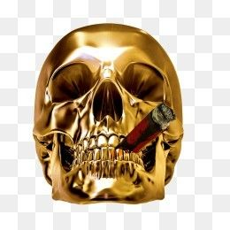 Free Download Golden Skull Png Image Iccpic Iccpic Com