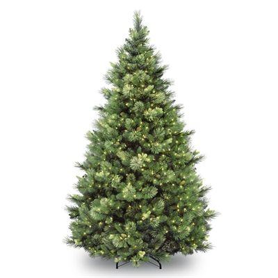 National Tree 6 5 Ft Pre Lit Carolina Pine Tree With Clear Lights Artificial Christmas Tree Pre Lit Christmas Tree Outdoor Christmas Tree