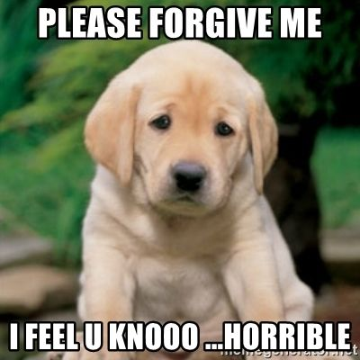 40 Adorable I M Sorry Memes People Won T Be Able To Resist Sayingimages Com Sorry Memes Love You Meme Forgive Me Meme