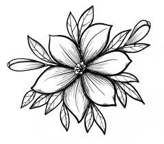 List Of Pinterest Dibujos Tumblr Blanco Y Negro Flores Images