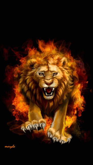 Manos Reizakis Lion Gif