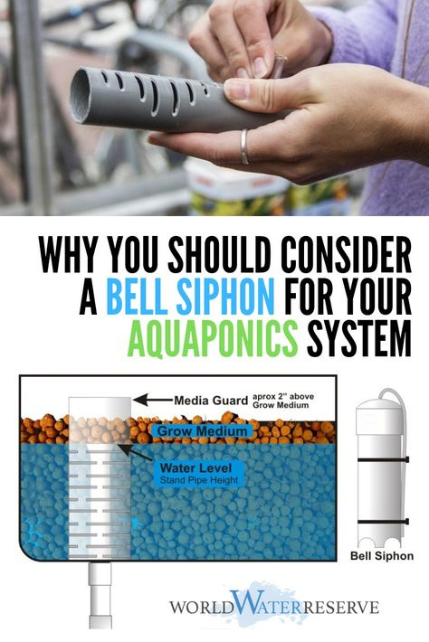 Why You Should Use a Bell Siphon for Your Aquaponics System