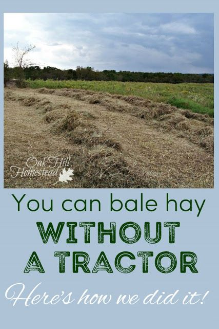 We Bale Hay by Hand How to bale hay without a tractor.How to bale hay without a tractor. Homestead Farm, Homestead Survival, Survival Skills, Survival Prepping, Survival Shelter, Homestead Living, Farms Living, Emergency Preparedness, Backyard Farming