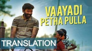 Vaayadi Petha Pulla Lyrics With English Meaning Kanaa Vaayadi Petha Pulla Lyrics With Translation In English Or Meaning Of Song Lyrics Meant To Be Songs