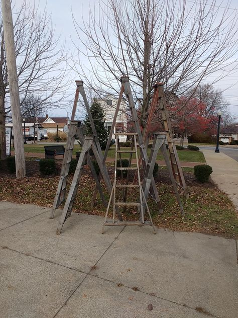 Authentic Apple Orchard Ladders 6ft And 10ft Old Vintage Orchard Apple Ladder Antique Orchard Picking Ladder 6 Foot Ladder Apple Orchard Instagram Ladder