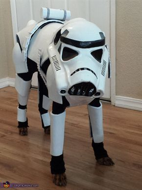 Stormtrooper Dog Halloween Costume Contest At Costume Works Com Pet Halloween Costumes Diy Dog Costumes Dog Halloween