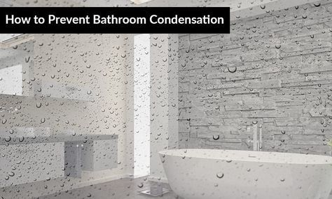 How To Prevent Bathroom Condensation Mold In Bathroom Bathroom Amazing Bathrooms