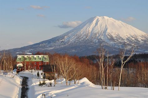 Book one of the 17 rooms at the Niseko Freedom Inn for a boutique stay in the Niseko Higashiyama Ski Area, Japan.