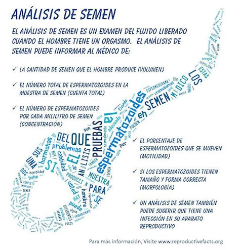 Pin En Infographics En Espanol