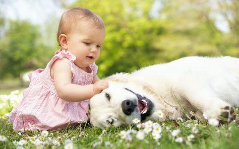 Babies With Animals Photos