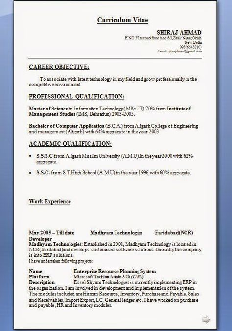 free resume writing tools Sample Template Example of ExcellentCV - sample resume information technology