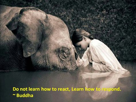 React is how you present your emotions. Respond is how you initially see the situation