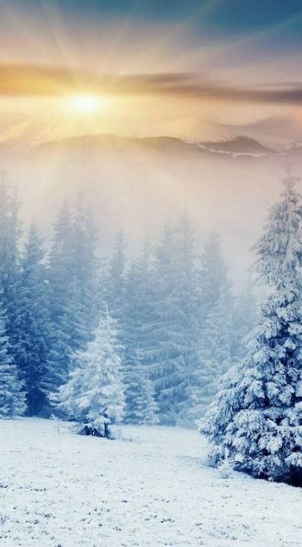 Wallpaper Iphone Winter Vibes 62 Ideas In 2021 Winter Wallpaper Teal Wallpaper Iphone Iphone Wallpaper Vintage
