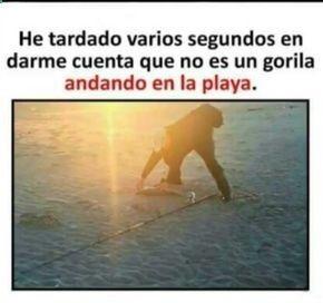 Un Gorila En La Playa Mira De Nuevo Para Mas Imagenes Graciosas Y Memes En Espanol Descarga A App Www Huevadas Net Memes Memes Chistosisimos Memes En Espanol