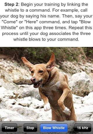 Dog Whistle Elite Training Guide Clicker Included Smartest